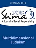 img - for Multidimensional Judaism (Sh'ma Journal: Independent Thinking on Contemporary Judaism) book / textbook / text book