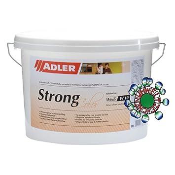 Strong color w10 1l de l tex pintura de l tex - Pintura magnetica precio ...
