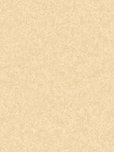 brush Wallpaper Pattern #9X8IR8RD
