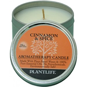 Cinnamon Spice Aromatherapy Candle- Made with 100% pure essential oils - 3oz tin