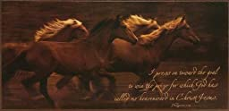 P. Graham Dunn BOC42 10.75 x 22.5 Tribe - Mounted Canvas Print