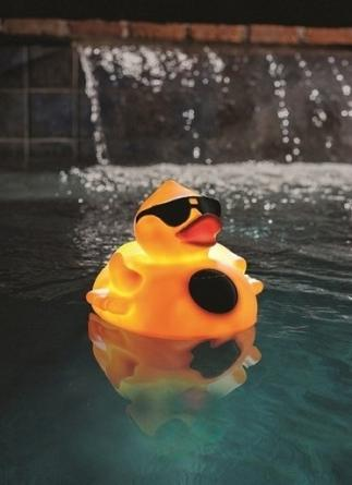 Amazon.com : GAME 8002 Solar Light Up Duck Pool