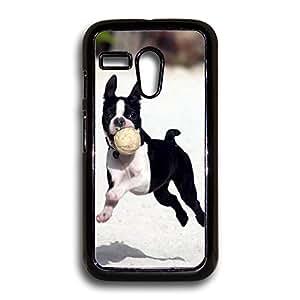 Boston Terrier Puppy Cute Boston Terrier Motorola Case, Moto G Case, Motorola G Case, Moto G 1st Gen Case