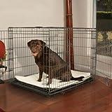 Petco Premium 2-Door Dog Crate, X-Large