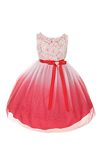 Flower Girls Dress Stunning Ombre Tulle Dress With Rosette Top 10 Red