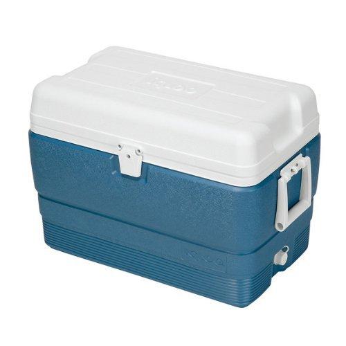 Igloo Maxcold Cooler (50-Quart, Icy Blue)