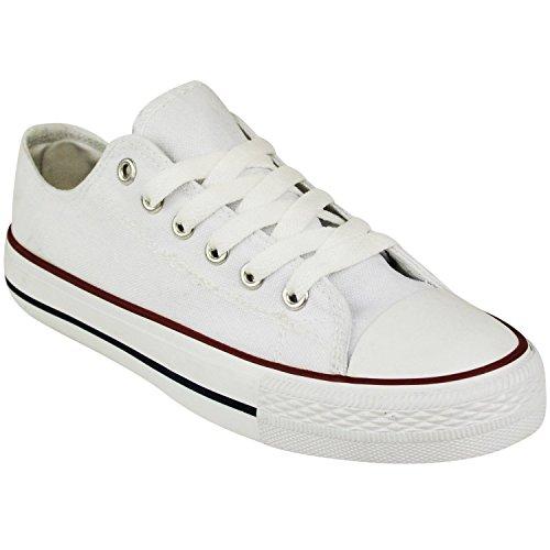 myshoestore-canvas-shoes-basses-femme-blanc-blanc-37