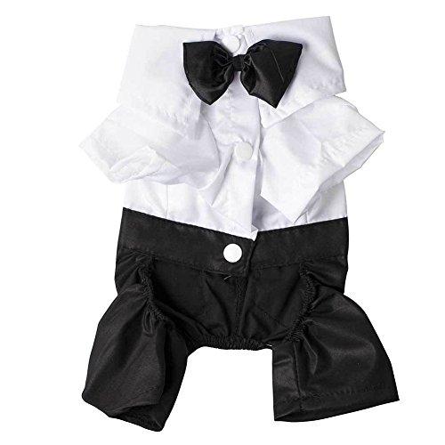 Men's Suit Bow Tie Small Pet Dog Clothes Puppy Apparel Jumpsuit (XL)