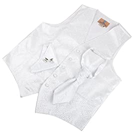 VS2004 White Pattern Fashion Vests Cufflinks Hanky Ascot Tie Set By Y&G