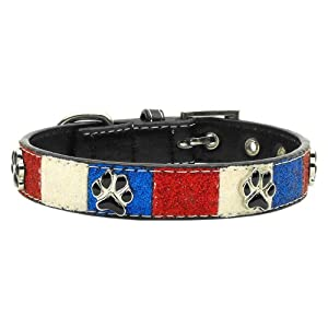 Mirage Pet Products Patriotic Ice Cream Paws Dog Collars with 3/4-Inch Matching Leash for Dogs, Medium