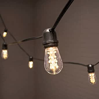 Edison Globe String Lights : Commercial Globe String Lights, Acrylic Edison LED, 106 ft, Black Wire, Warm White - - Amazon.com