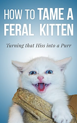Zachariah Atteberry - How to Tame a Feral Kitten: Turning that Hiss into a Purr (English Edition)