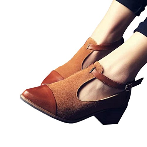 Susanny Women's Vintage Cute T-strap Low Heel Pointed Toe Oxfords Pump Shoes with Buckle 5