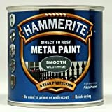 Hammerite Metal Paint Smooth 250ml Wild Thyme