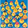 Rubber Ducky Premium Assortment 25 Count ****** 25 rubber duckys!