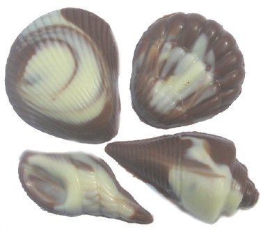 Chocolate Wedding Favors 55 Lovely Chocolate Seashells Varied Shapes