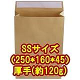 角底 紙袋 SSサイズ(250*160*45) 超厚手(約120g/m) 10枚入
