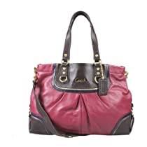Hot Sale Coach Ashley Leather Beet Multicolor Carryall F17096