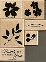 Stampin\' Up Best Blossoms stamp set by Stampin\' Up