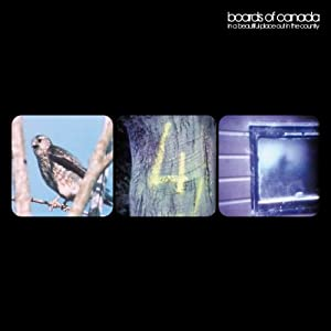 """In a Beautiful Place Out in Th [12"""" VINYL]"""
