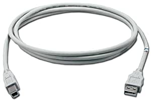 QVS 10ft USB 2.0 Certified 480Mbps Type A Male to B Male Beige Cable