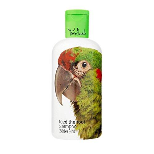 feed-the-root-shampoo