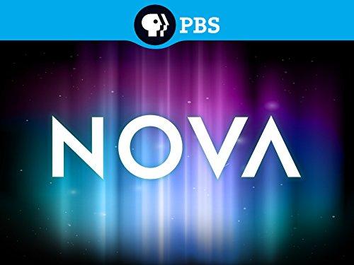 Buy Nova Now!