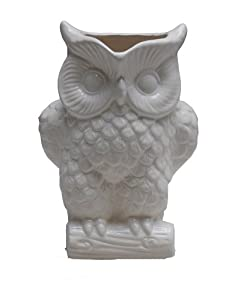 Two's Company Owl Large Pitcher