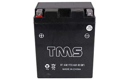 TMS® AGM Ytx14ah-bs Battery for Yamaha YFM YTM Suzuki Lt-f300 f250 Honda Atc200 Trx200 Kawasaki Klf220-a Klf250
