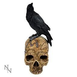 Salem Witch Witchcraft Skull with Pentagram Pentacle Raven Jewelry Trinket Box Statue Figurine