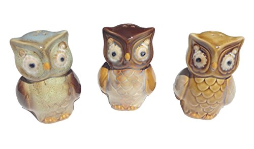 Best Trendy Popular Owl Ceramic 3 Piece Salt & Pepper Gift Set Best Cheap Unique Best Popular Top Fun High School College Nurse Graduation Gift Idea for Mom Wife Mother In Law Sister in Law Sister