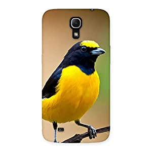 Enticing Sweet Bird Back Case Cover for Galaxy Mega 6.3