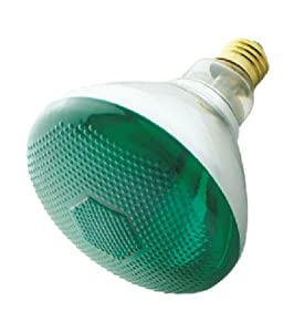 Incandescent Weatherproof 100 Watt Indoor/Outdoor Green Floodlight Bulb