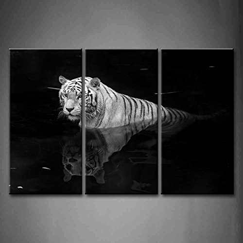3 Panel Wall Art Black And White White Tiger Standing In Water In Black Background Painting Pictures Print On Canvas Animal The Picture For Home Modern Decoration Piece (Stretched By Wooden Frame,Ready To Hang)