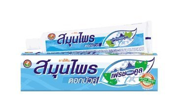 The Twin Lotus Herbal Toothpaste Fresh & Cool.