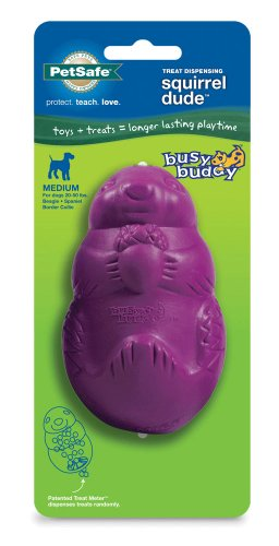 PetSafe Busy Buddy Squirrel Dude Dog Toy, Medium