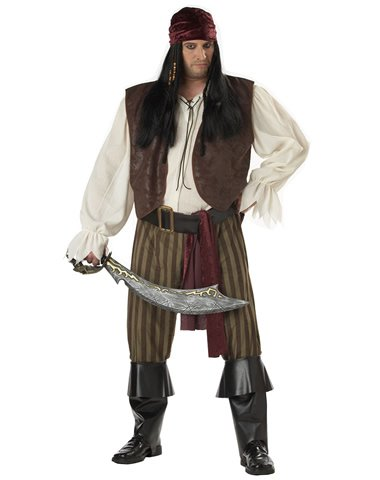 California Costume Collection Men's Rogue Pirate Plus Size Costume
