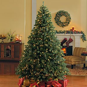 4.5 Foot Blue Spruce Pre-Lit Christmas Tree, Clear