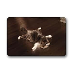 Custom Machine Washable Door Mat Funny Cat