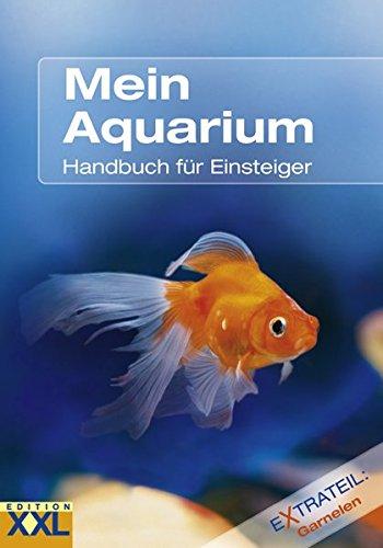 mein-aquarium-handbuch-fur-einsteiger-extrateil-garnelen