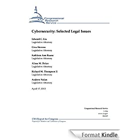 Cybersecurity: Selected Legal Issues (English Edition)