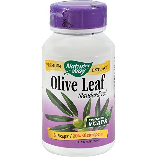 NATURE'S WAY OLIVE LEAF 20% EXTRACT, 60 VCAP (Natures Way Olive Leaf Extract 20 compare prices)
