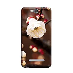 TransMute Premium Printed Back Case Cover With Full protection For Micromax Canvas Juice 3 Q392 (Designer Case)