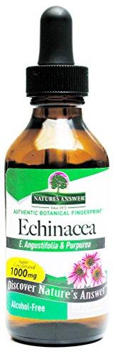 Nature's Answer Echinacea Alcohol Free 2-Fluid Ounces