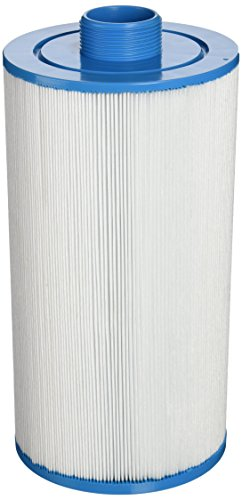 Filbur FC-2401 Antimicrobial Replacement Filter Cartridge for Freeflow Legend Pool and Spa Filter (Hot Tub Freeflow compare prices)