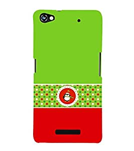 Green Owl 3D Hard Polycarbonate Designer Back Case Cover for Micromax Canvas Hue 2 A316