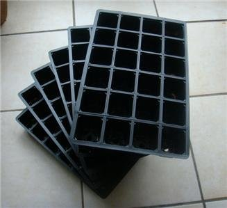 nutleys-24-cells-seed-tray-cavity-insert-pack-of-6