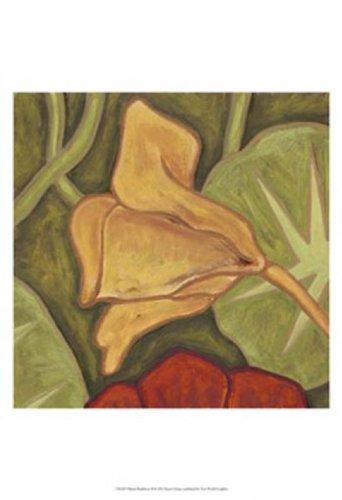 Vibrant Rainforest II Poster Print by Karen Deans (13 x 19)