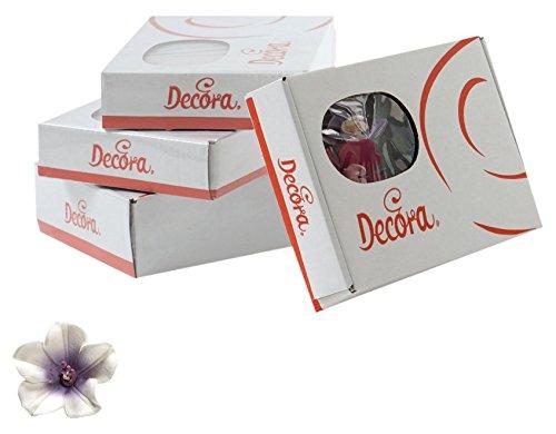 decora-paquet-12-azalee-blanc-avec-centre-violet-210-g