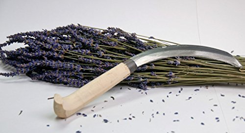 """13"""" Serrated Landscape and Harvest Knife/sickle - Perfect to Harvest Your Lavender Plants"""